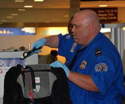 tsa-screener