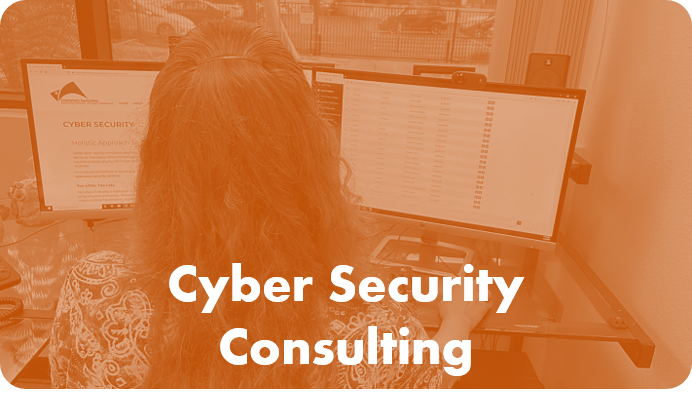 Cyber Security Consulting By Chameleon Associates