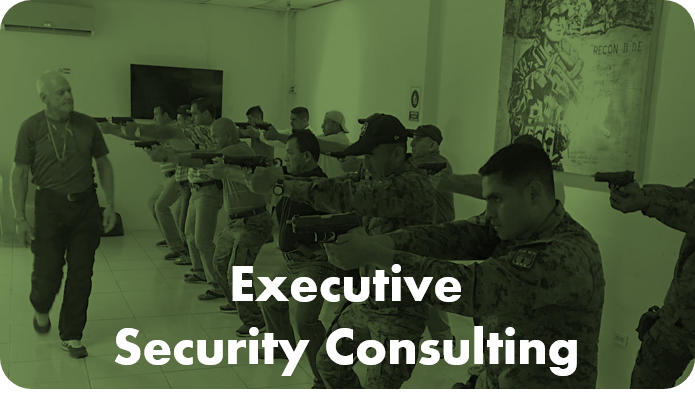 Executive Security Consulting By Chameleon
