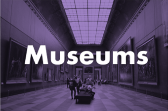 Museum Security Consulting By Chameleon