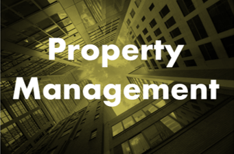 Property Management Security Consulting  By Chameleon Associates