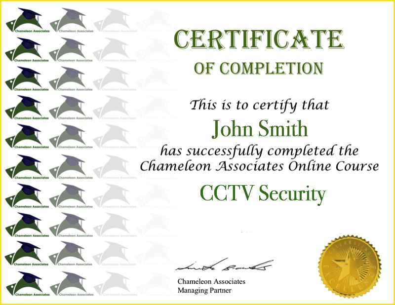 Certificate Example CCTV Security 2020
