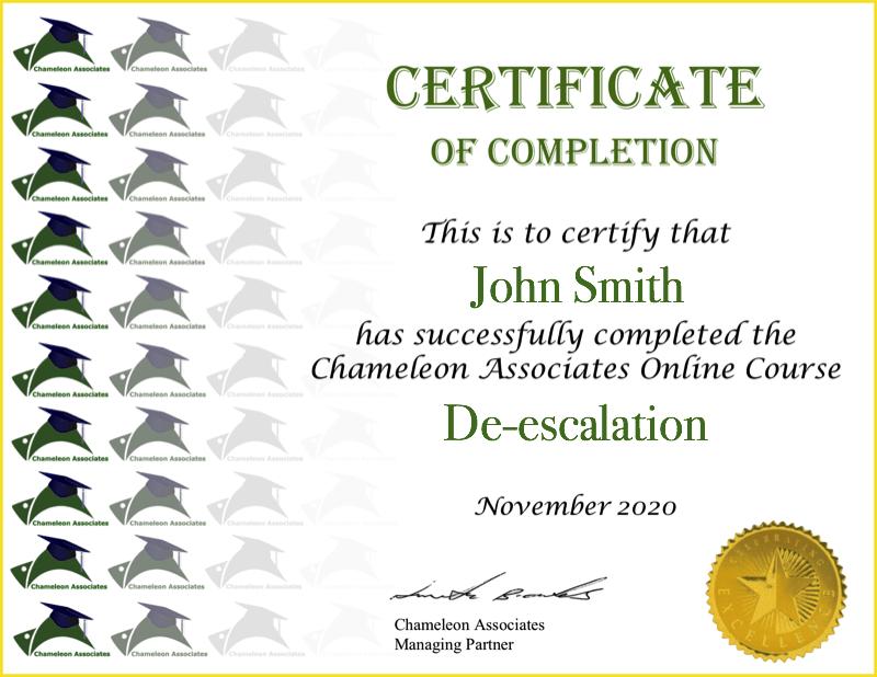 Certificate Example CCTV Security 2020