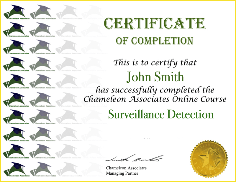 Certificate Example Surveillance Detection 2020