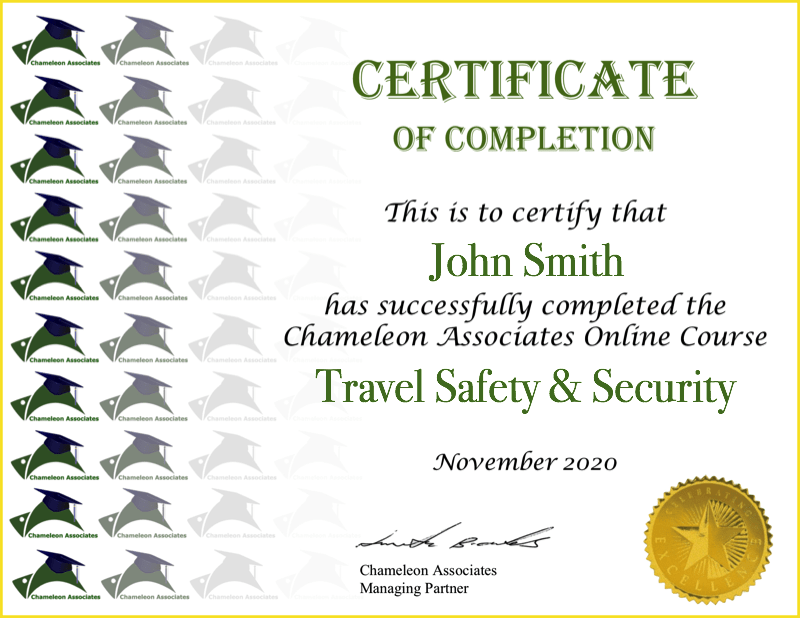 Certificate Example Travel Safety 2020