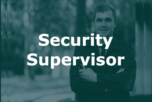 Security Supervisor icon