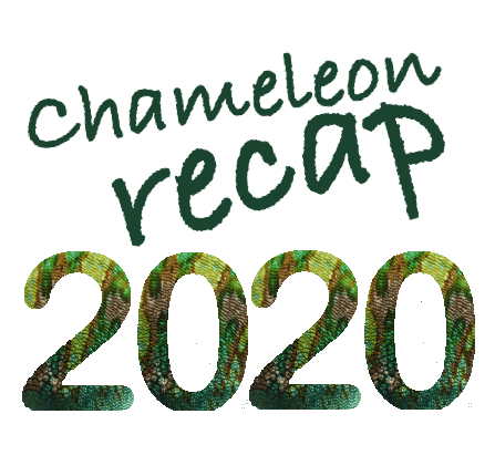 Chameleon Recap 2020