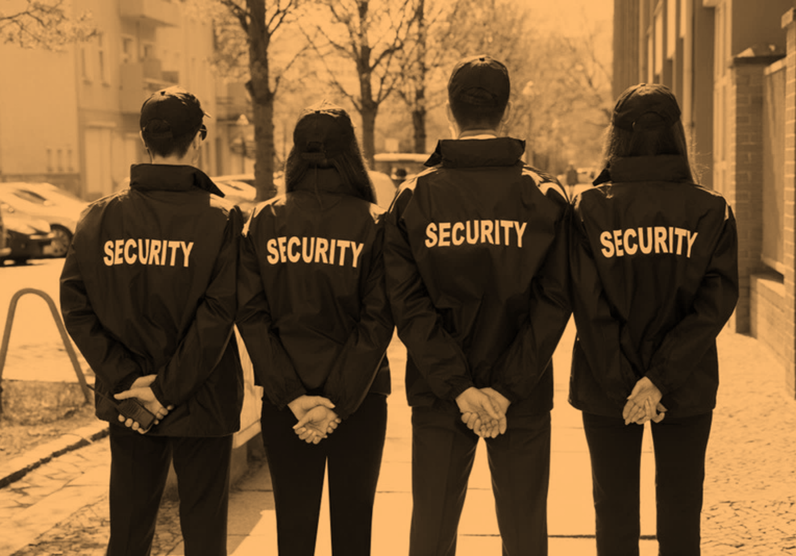Security Companies By Chameleon Associates